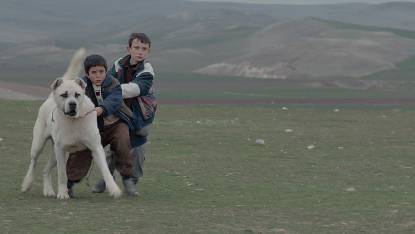 Still from 'Sivas' directed by Kaan Müjdeci